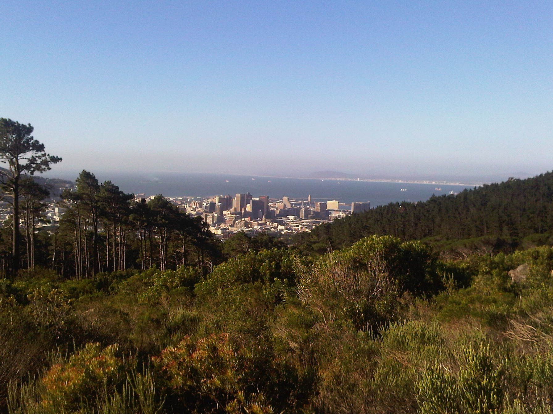 Walking in the City - Cape Town