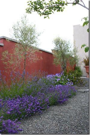 Mediterranean garden design how to create a tuscan garden for Garden design ideas lavender