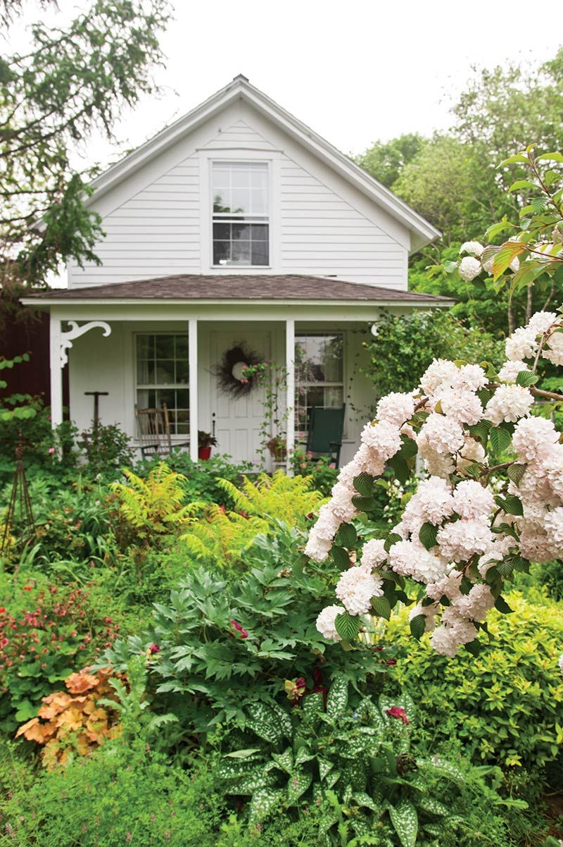 Take A Peek Inside This Garden Writer S Green Oasis Outdoor