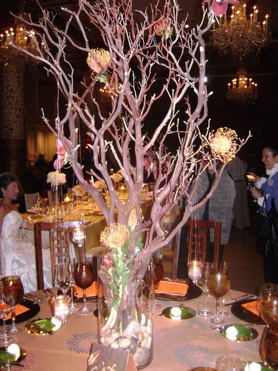 Centerpieces Manzanita Tree Branches In Tall Clear Vase Filled With Rocks Hanging