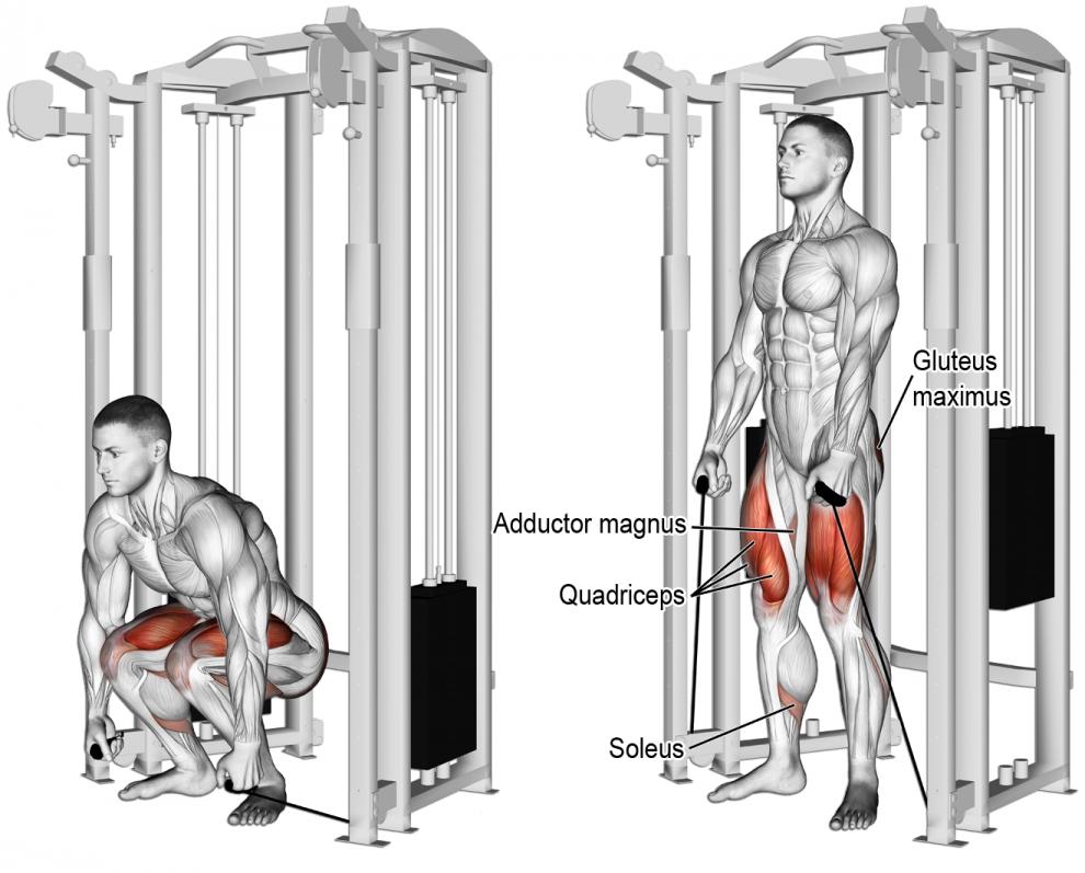 comment effectuer l 39 exercice squat aux poulie vis vis en. Black Bedroom Furniture Sets. Home Design Ideas