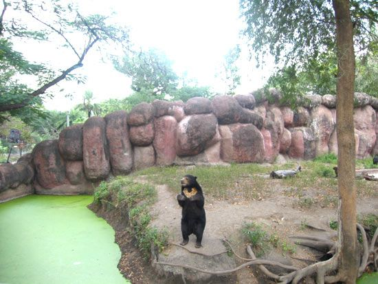 Nehru Zoological Park Is A Zoo Located Near Mir Alam Tank In