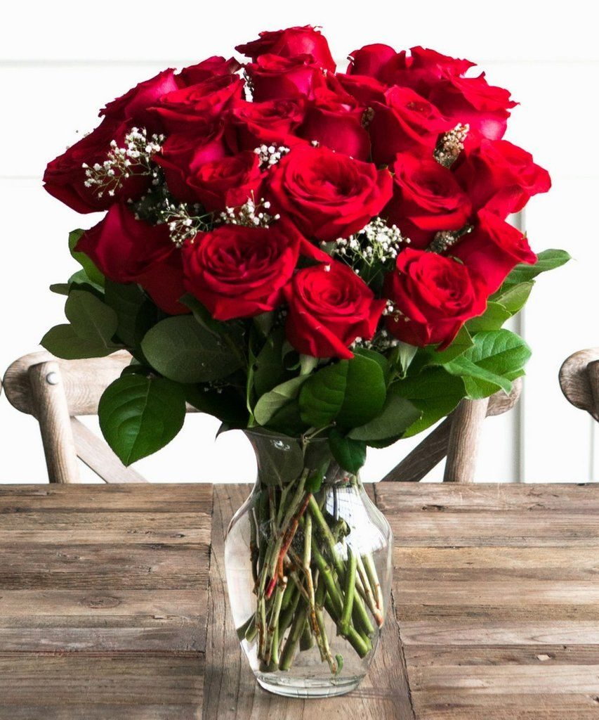 Two Dozen Red Roses | Dozen red roses, Red roses, Beautiful red roses