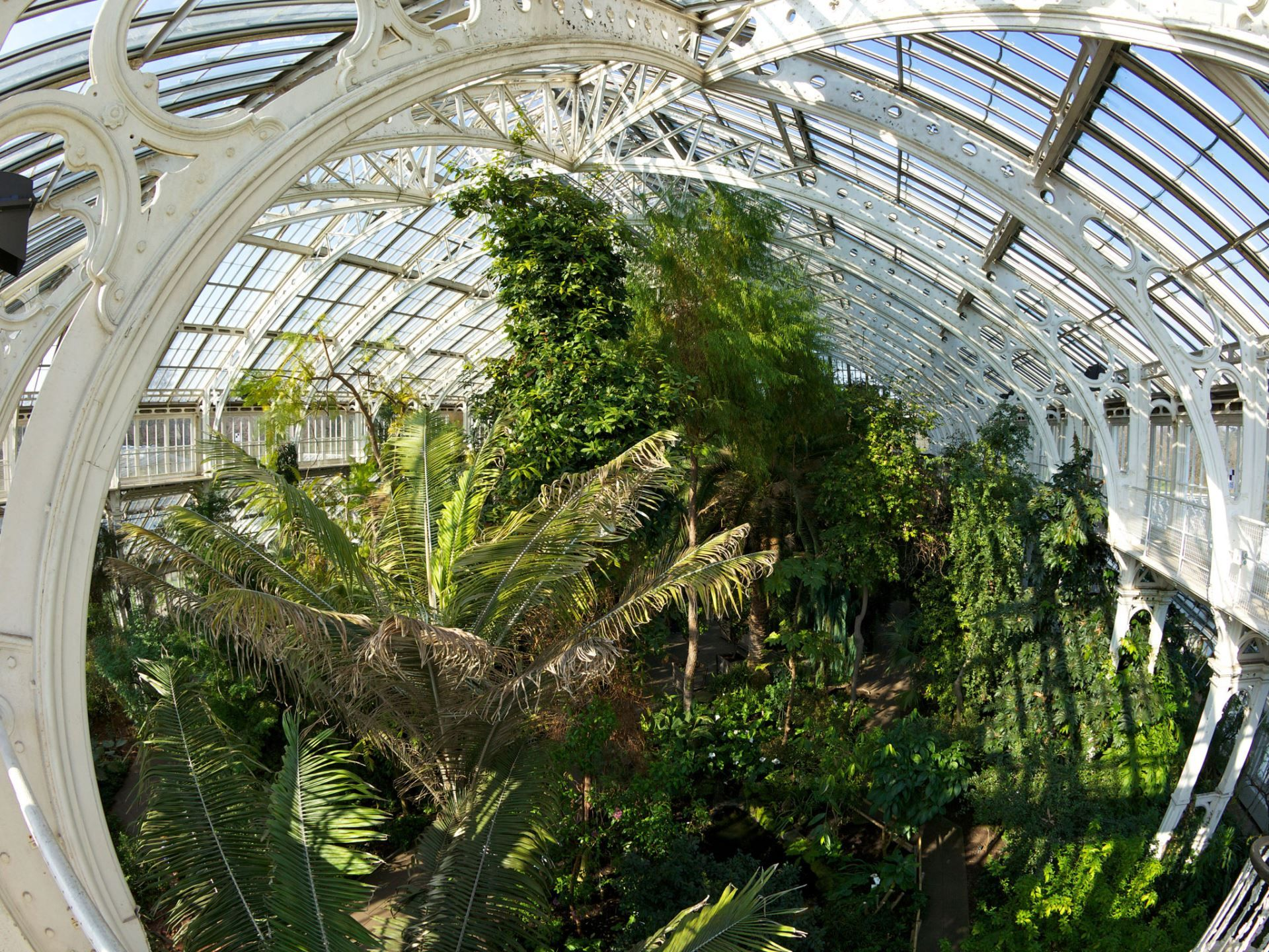 8 Beautiful Indoor Gardens That Will Keep You Warm All Winter Indoor Gardens Beautiful Gardens Kew Gardens
