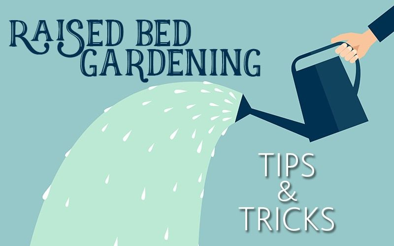 Raised Garden Beds 101 The Basics + Helpful Tips is part of Big garden How To Make - This post was originally published on July 12, 2016, and has since been updated  Have you considered raised bed gardening but haven't gotten around to trying it  We'll show you how it's done  We will also break down the benefits of raised garden beds, show you a few different