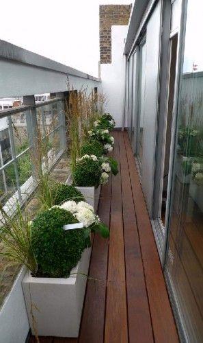 Sol Balcon Etroit En Bois Et Boules De Buis Balcon Etroit Amenager Balcon Et Deco Balcon