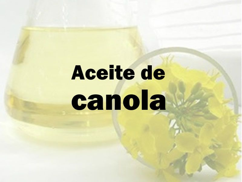 Aceite De Colza Canola Cómo Saponifica Y Propiedades Cosméticas Hacer Jabón Como Hacer Jabon Jabones