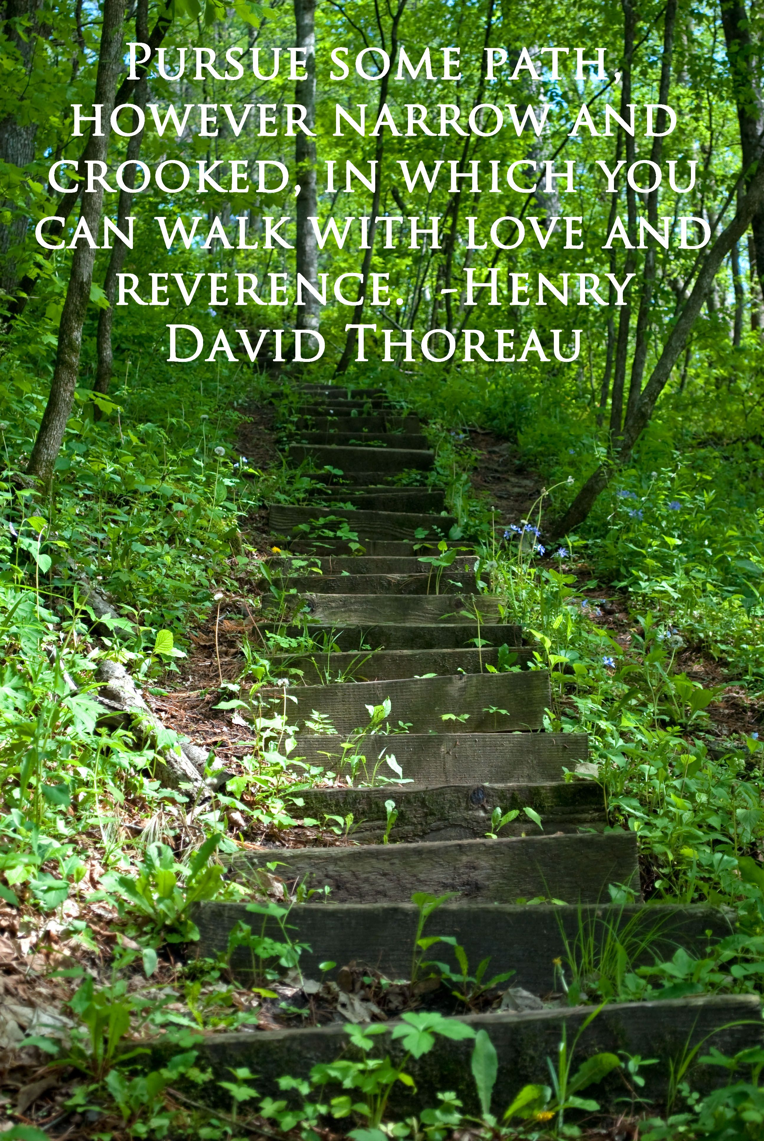 Inspirational Quotes Nature: #Nature #Quote Of The Week By Henry David #Thoreau