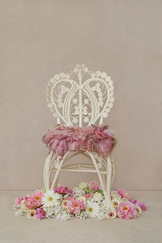 Sitting Pretty Strawberry Luisa Dunn Photography Shop in