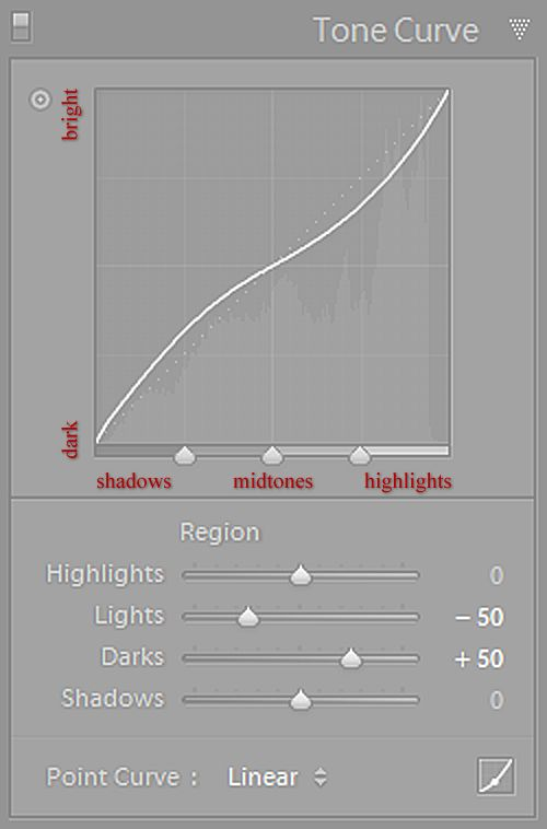 Mastering Lightroom: How to Use the Tone Curve Panel.