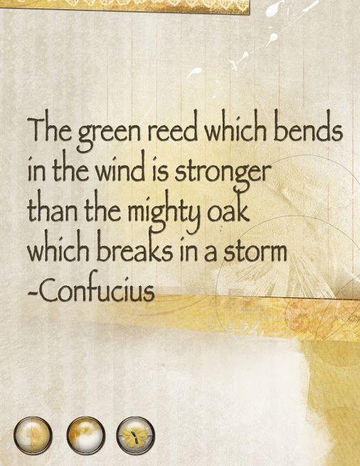 Famous Confucius Quotes Confucius Quotes  Wisies  Pinterest  Confucius Quotes Wisdom And .
