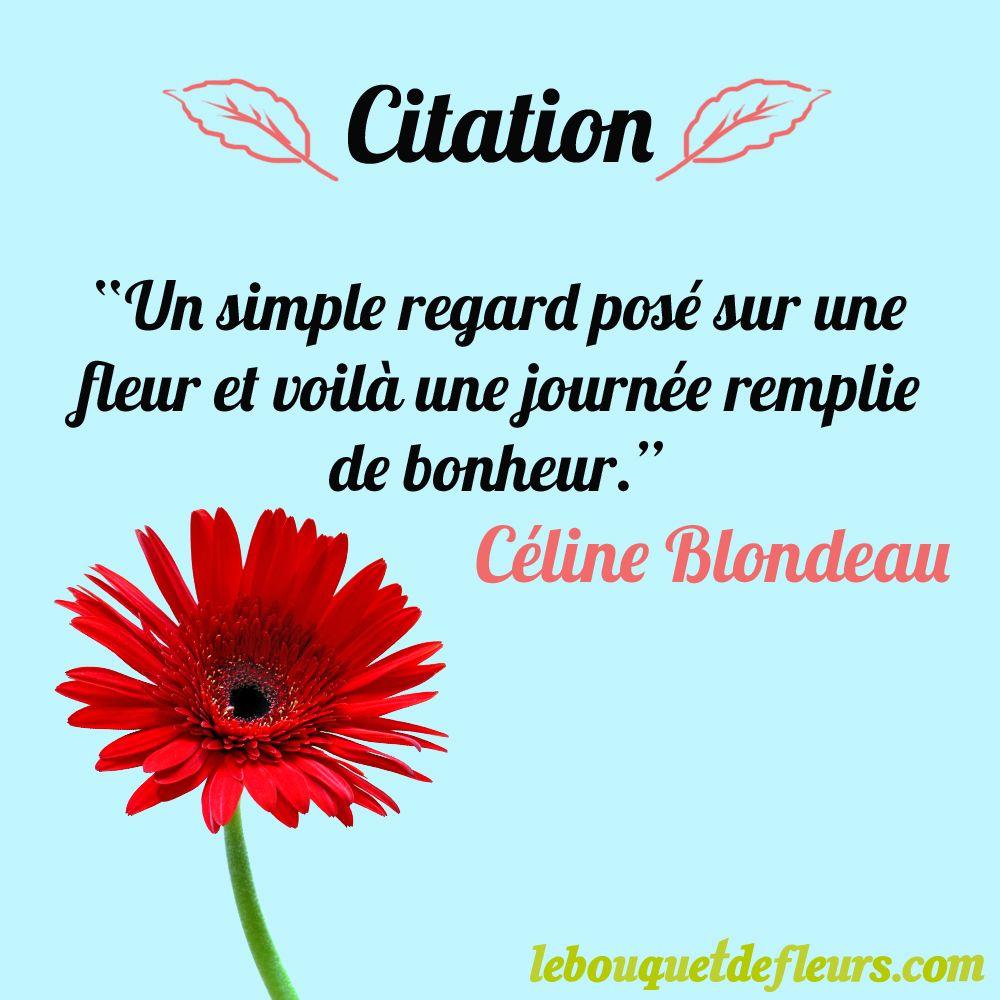 Citation Un Simple Regard Posé Sur Une Fleur Et Voilà Une