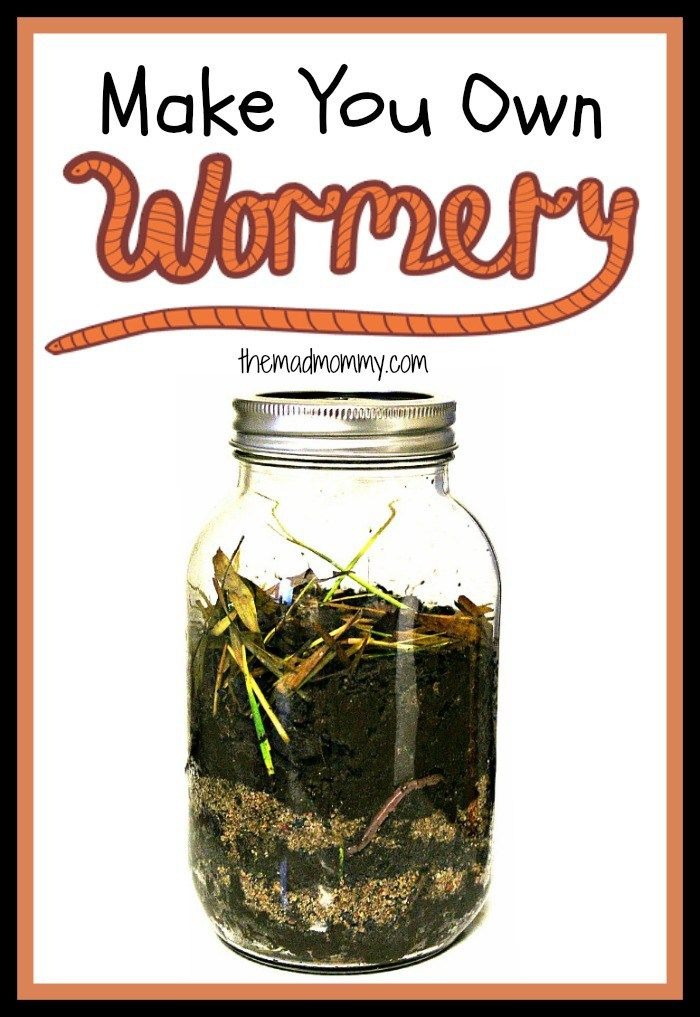 The Diy Wormery Project  Make Your Own Wormery