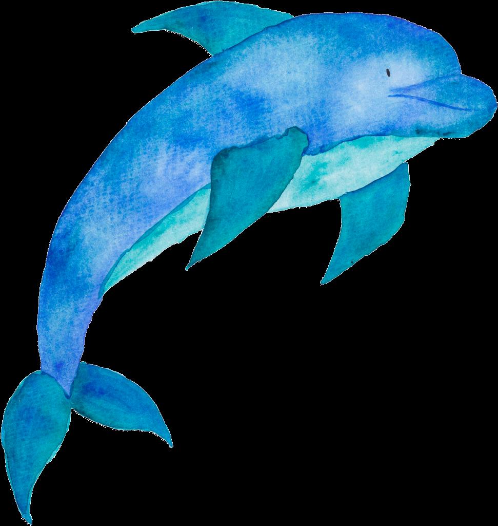 Детский дельфин картинки