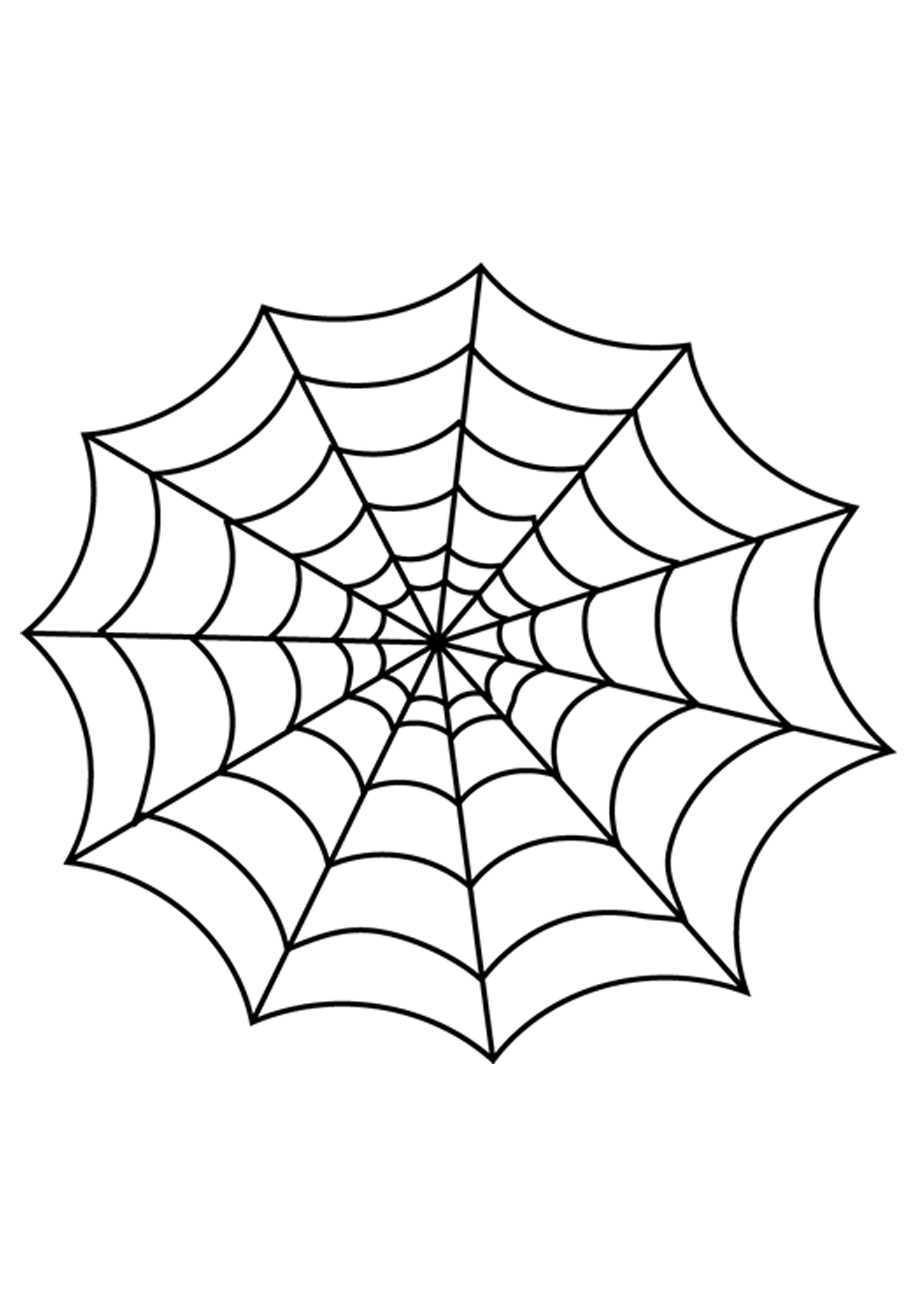 spider web coloring page # 4