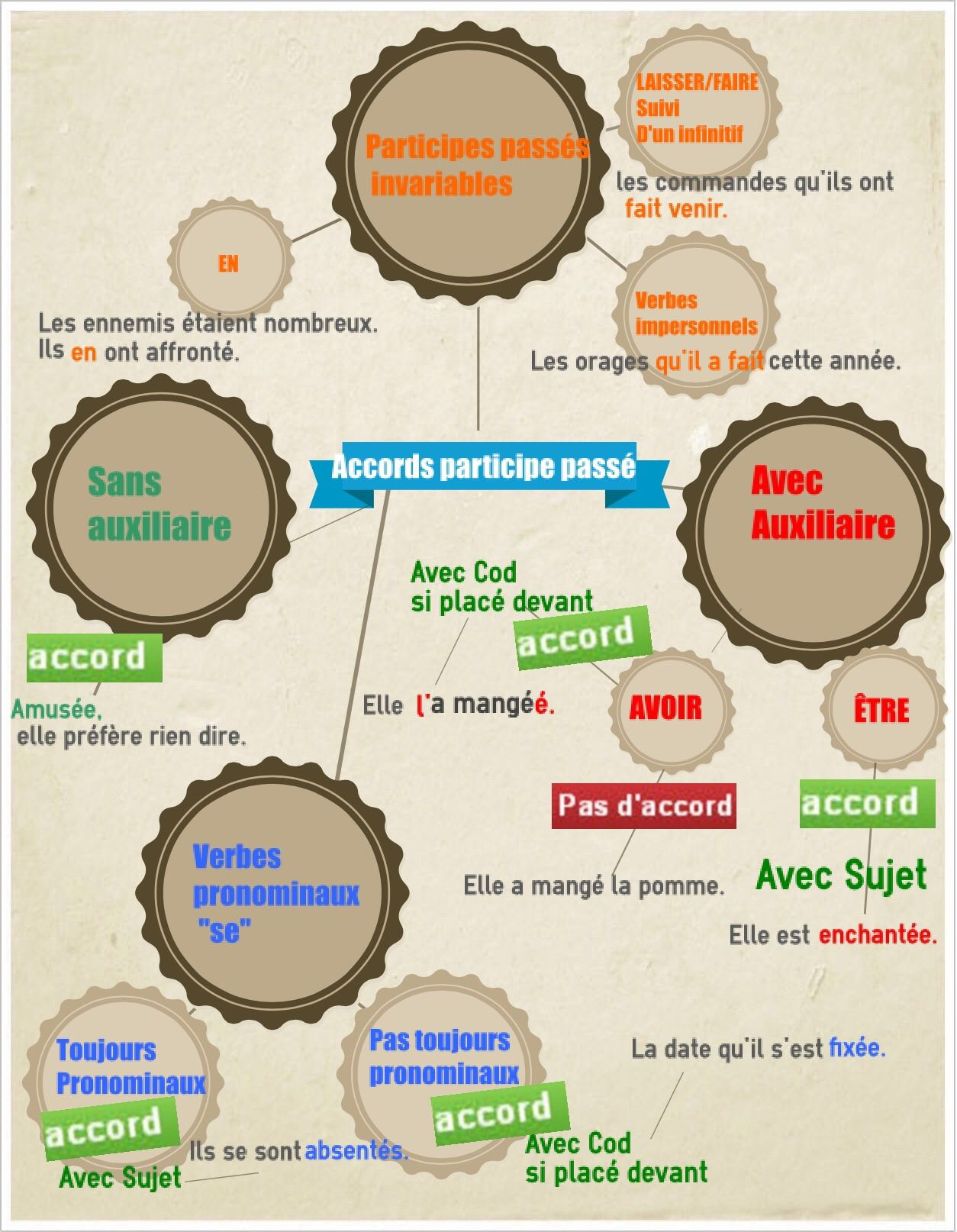 Carte Mentale Accord Du Participe Passe.Accord Des Participes Passes Participes Passes French