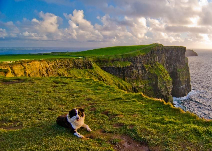 Tourism Ireland Us On Places To Go Ireland Vacation Cliffs Of Moher