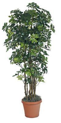 Fake Trees For Home Decor The Decorating Artificial Plants Artificialplantswindow