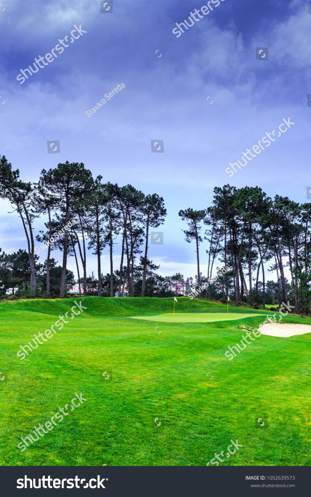 A Fragment Golf Course With Flagsticks At Holes In The Pine Forest Ad Affiliate Flagsticks Golf Fragment F In 2020 Golf Courses Swimmer Royalty Free Stock Photos