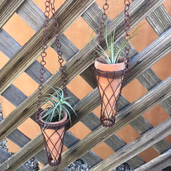 This Air Plant In A Terra Cotta Cone Shaped Vase Hangs From A