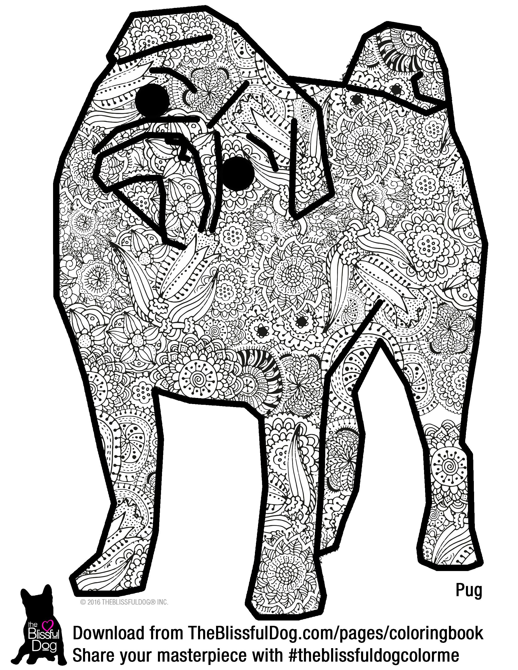 Enjoy coloring this blissful Pug! | A-COLORING BOOK PAGES ...