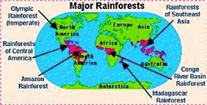 Tropical Rainforests In The World Bing Images Rainforest Map