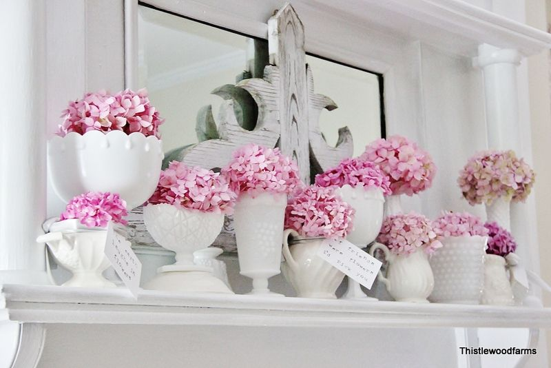 pink hydrangeas from thistlewood farm - oh so pretty in milk glass or ironstone - we have both at www.hendersonmemories.com