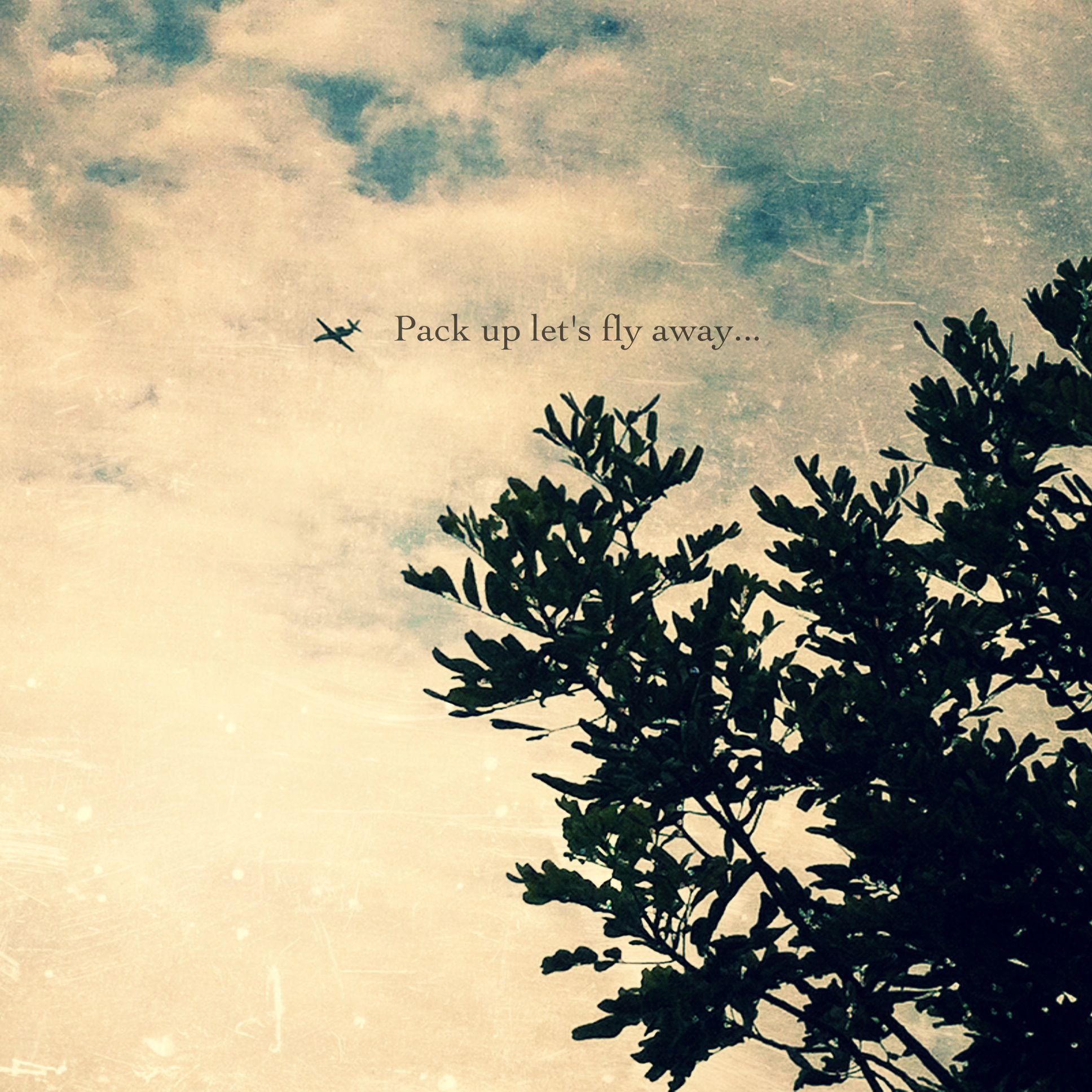 quote photography by melissa sue serrano fly sky plane