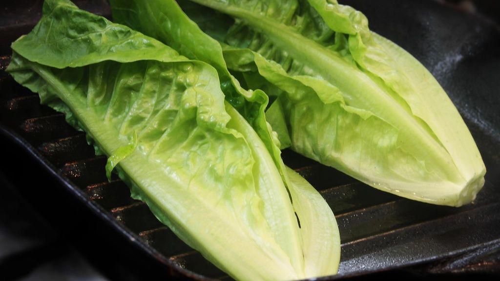 Romaine Salaatti