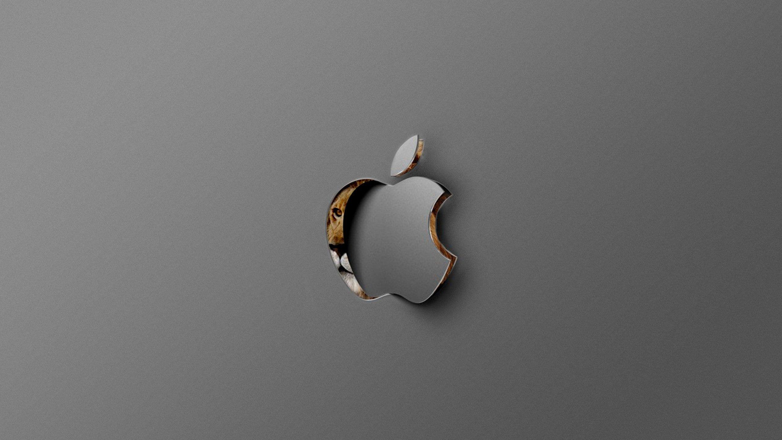 Computer Computers 2560x1440 Mac Os X Lion Os Mac Apple Macintosh 2k Wallpaper Hdwallpape Lion Wallpaper Mac Os Computer Wallpaper Desktop Wallpapers