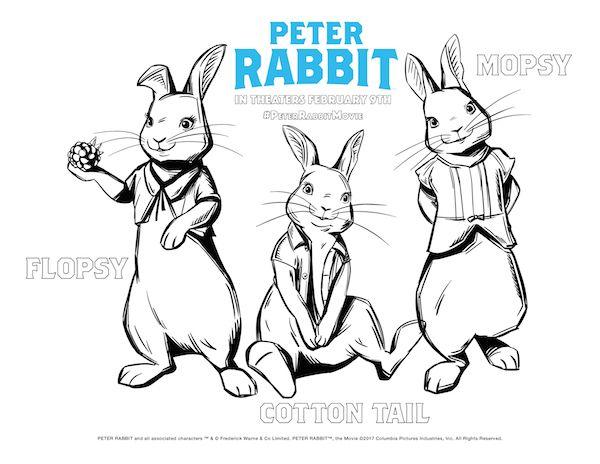 Peter Rabbit Printable Coloring Sheets Arlo Christening Peter Rabbit Movie Rabbit Colors Peter Rabbit