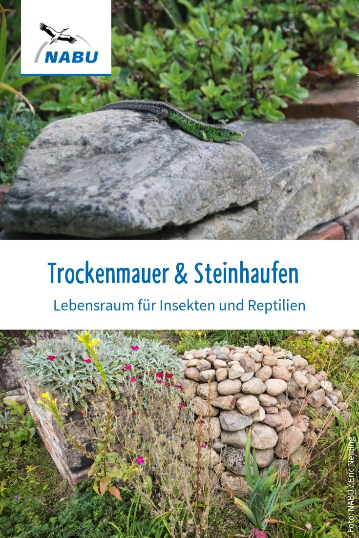 Trockenmauer & Steinhaufen im Garten