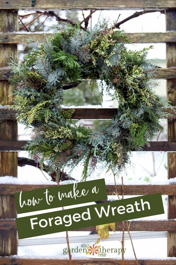 Photo of Experience Nature: Make a Fresh Foraged Wreath