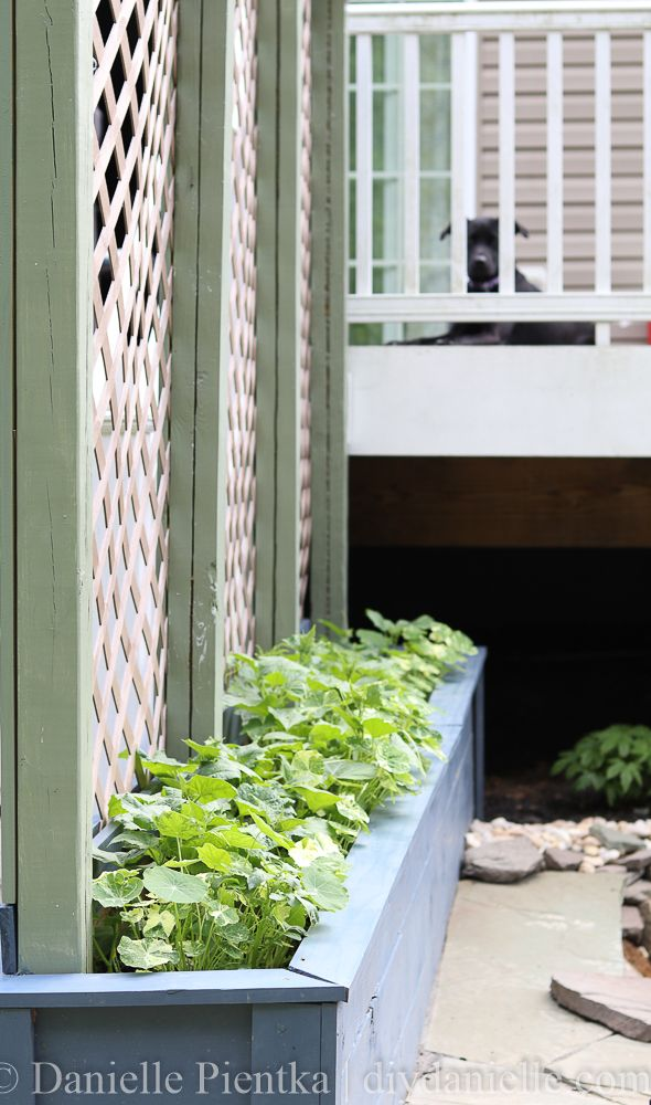Diy Planter Box With Trellis Diy Planters Planter Box 400 x 300