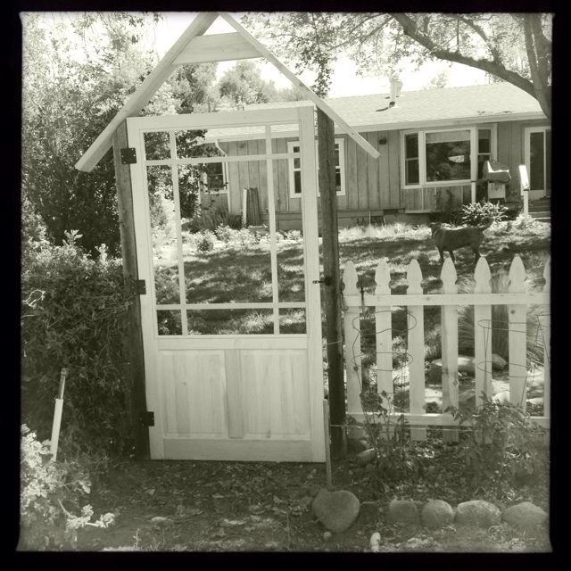 My moms unfinished garden gate. Make from a wood screen door. | For ...