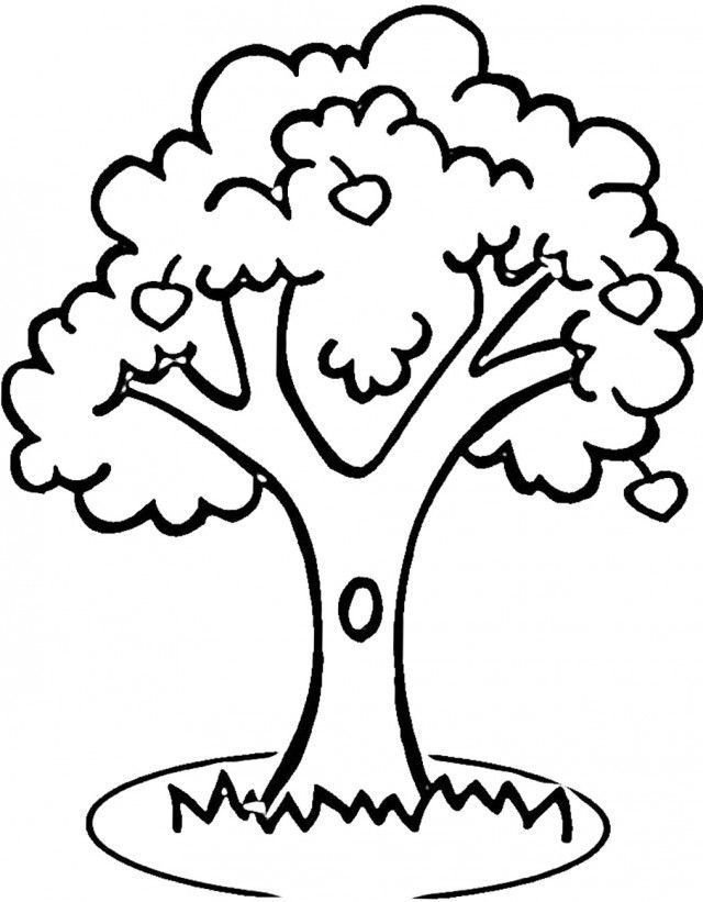 Apple Tree Coloring Pages Printable Tree Coloring Page Apple