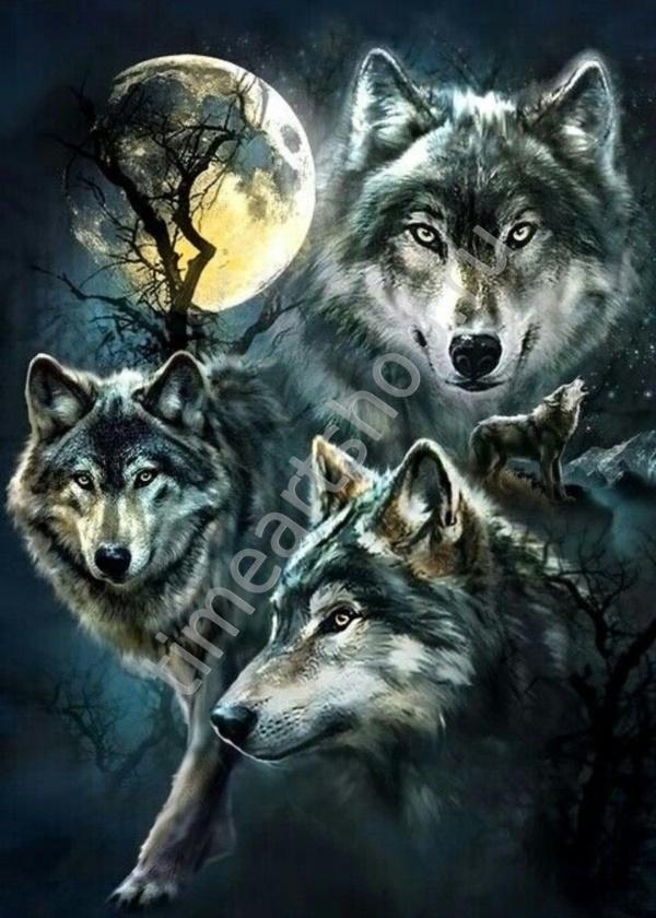 Лунные волки, картина раскраска по номерам. размер 40*50см ...