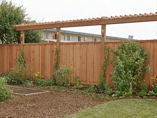 Garden Structures · Privacy Idea   Grow Fast Growing Vines On It