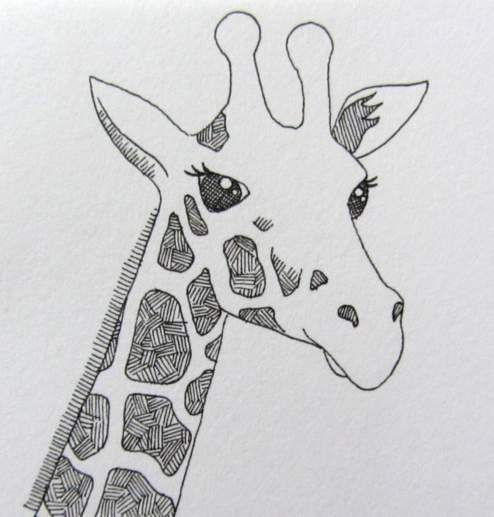 Line Art Giraffe : Line drawing of a giraffe by clare willcocks my