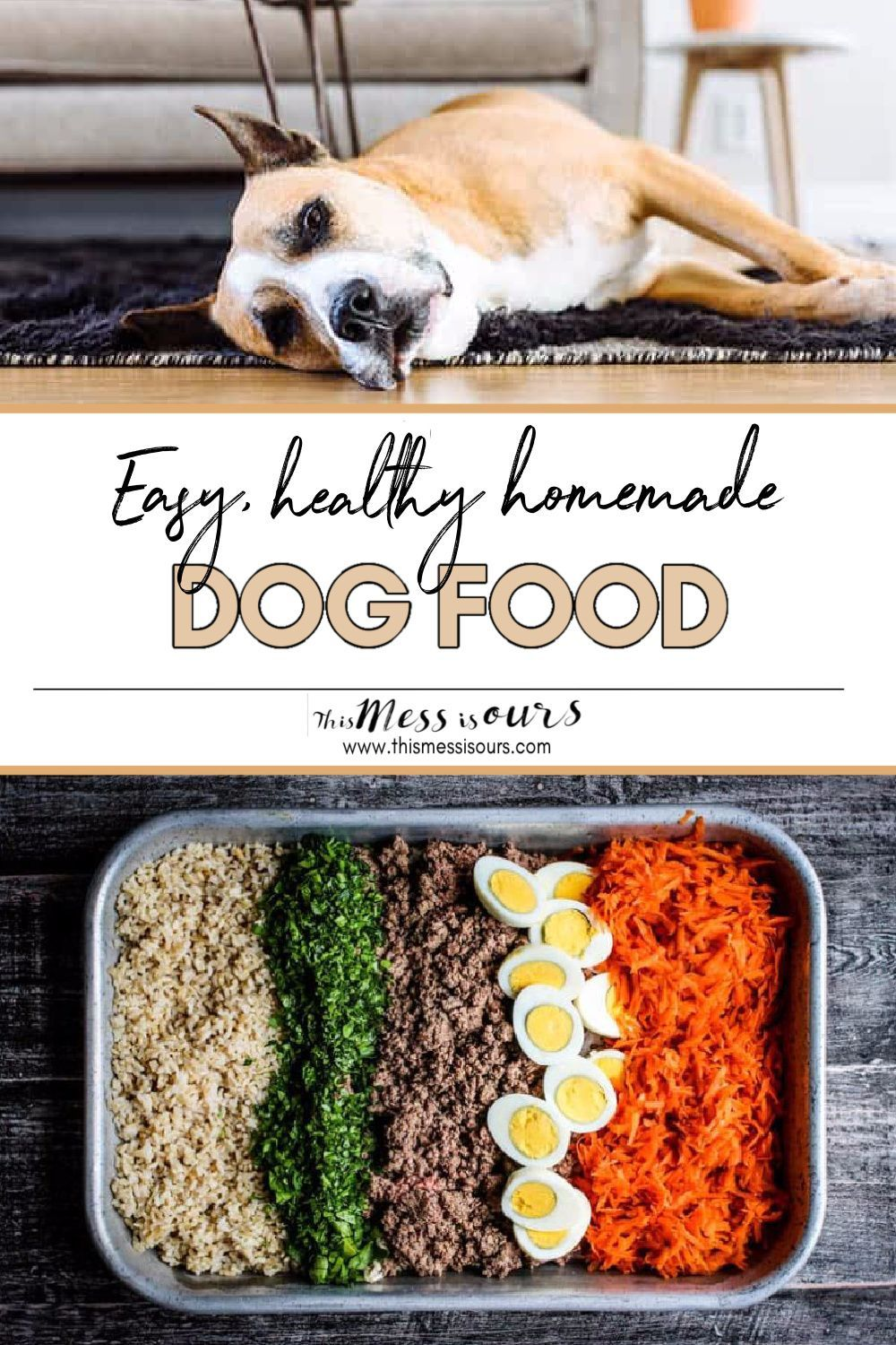 Easy homemade dog food recipe this mess is ours recipe