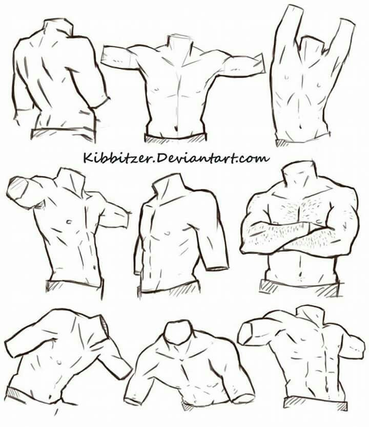 Corpo Masculino Desenhando Referencias Torso Masculino
