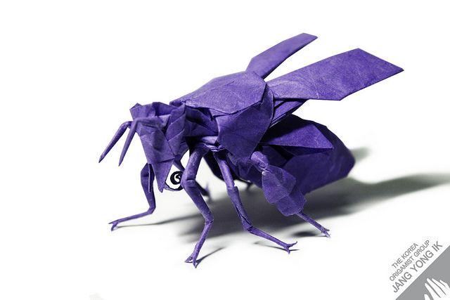 Origami Honey Bee 22