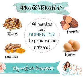 alimentos naturales para subir la progesterona