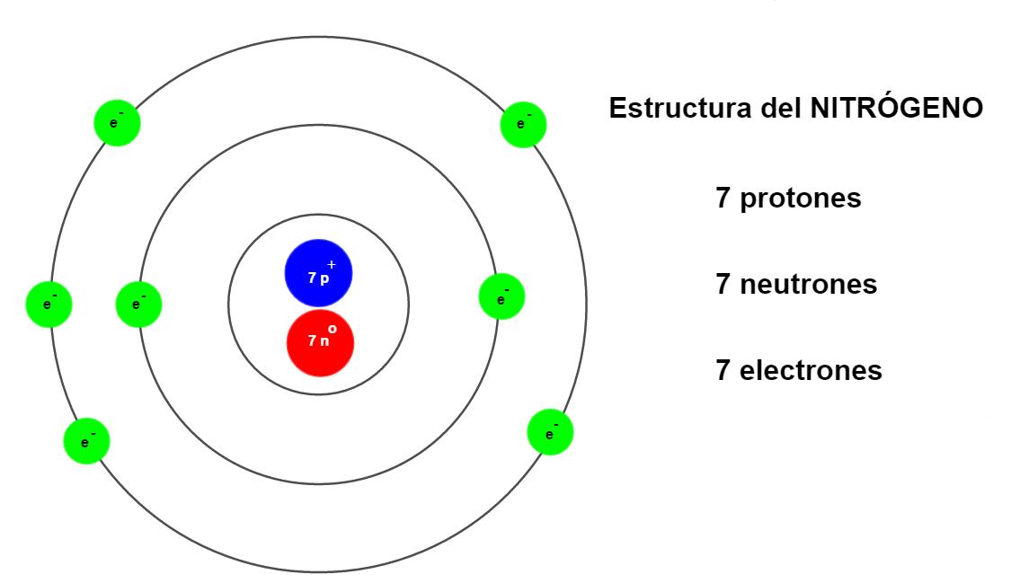 átomos Modelo De Bohr Representación De La Estructura Nitrógeno Modelo De Bohr Ciencias Quimica Modelos