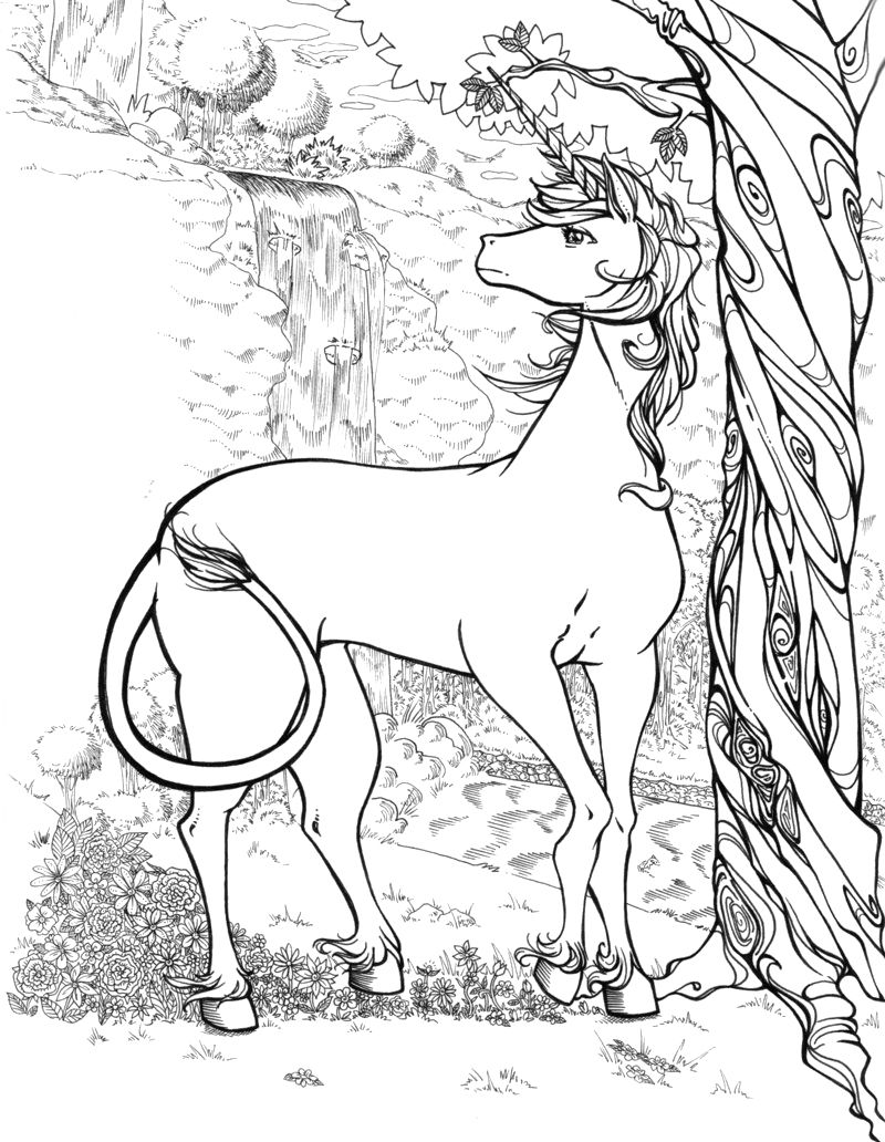 Magical unicorn coloring pages - The Male In The Middle Of The Forest Of The Unicorn Picture Coloring Pages