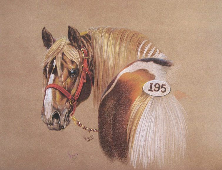 Horse Dog Drawings In Colored Pencil Carrie L Lewis Artist Realistic Drawings Animal Drawings Horse Drawings