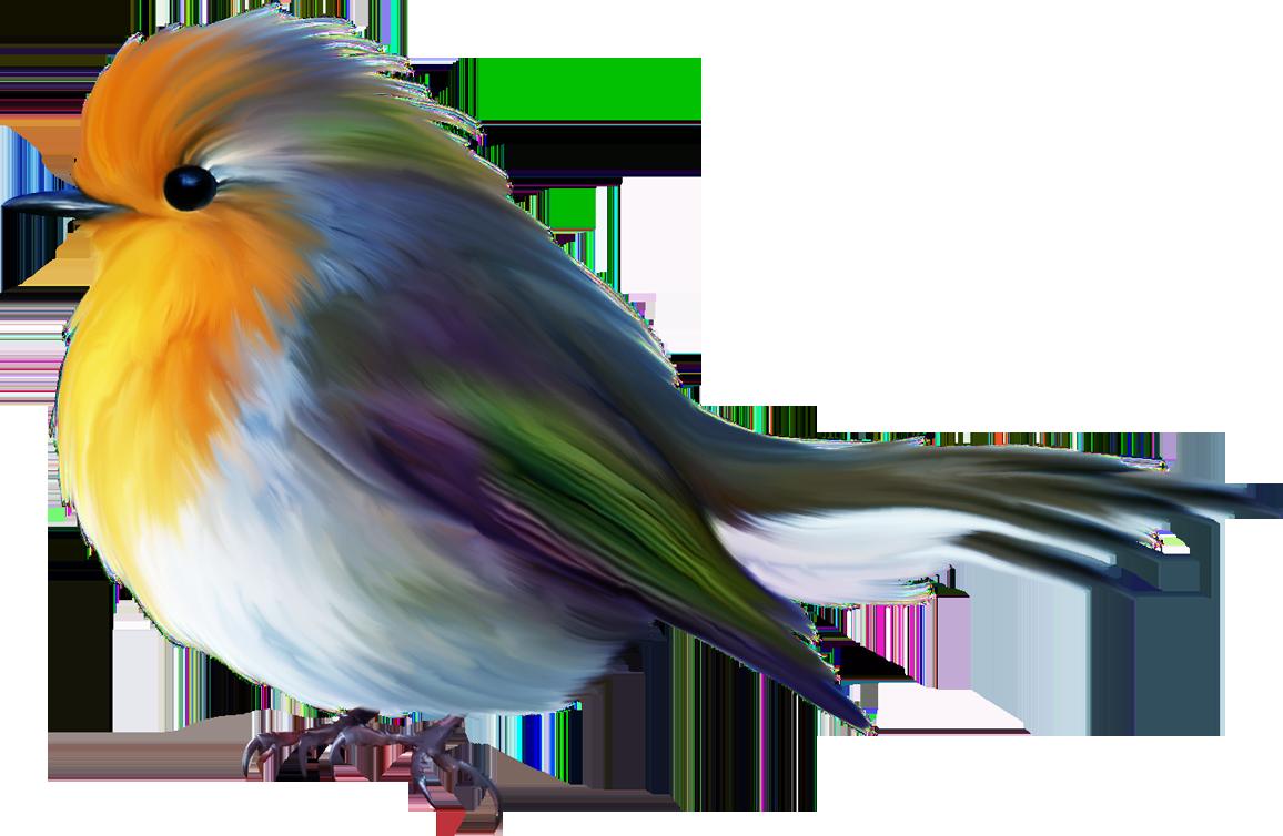 гараж цветные картинки с птичками отрядов уже неоднократно
