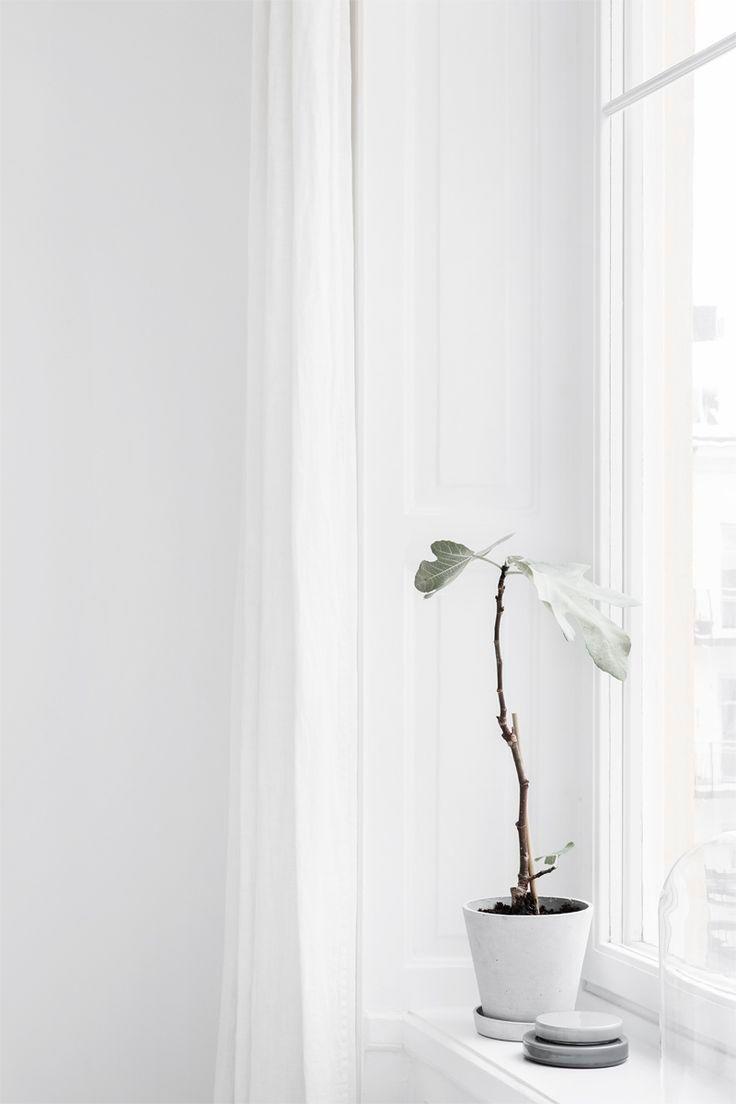 Receiving Room Interior Design: 24 Examples Of Minimal Interior Design #24