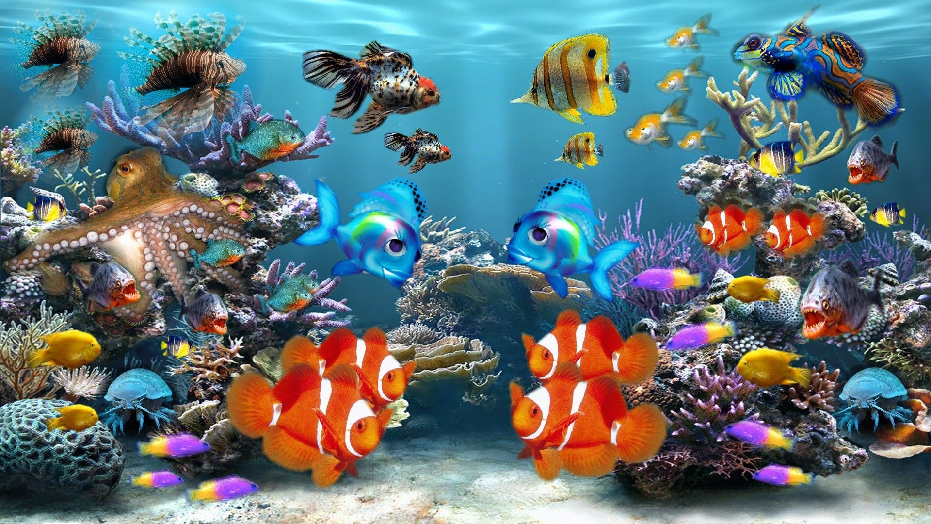 Fish tank moving desktop backgrounds aquarium colors for Desktop fish tank