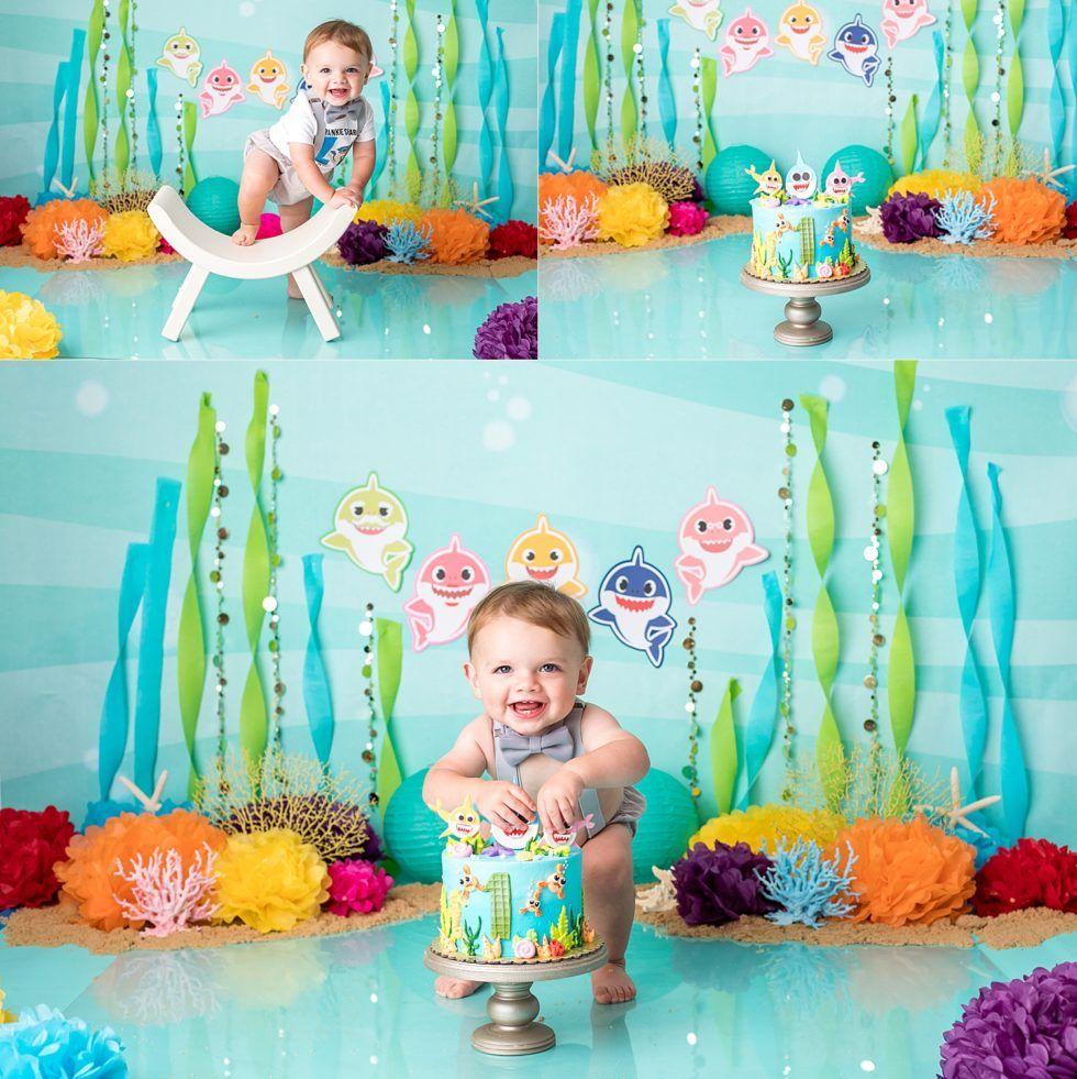 Baby shark cake smash shark theme birthday baby boy